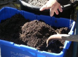 Beautiful finished compost